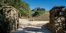 Moraga-Vineyards22