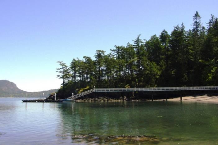 paul allen's island