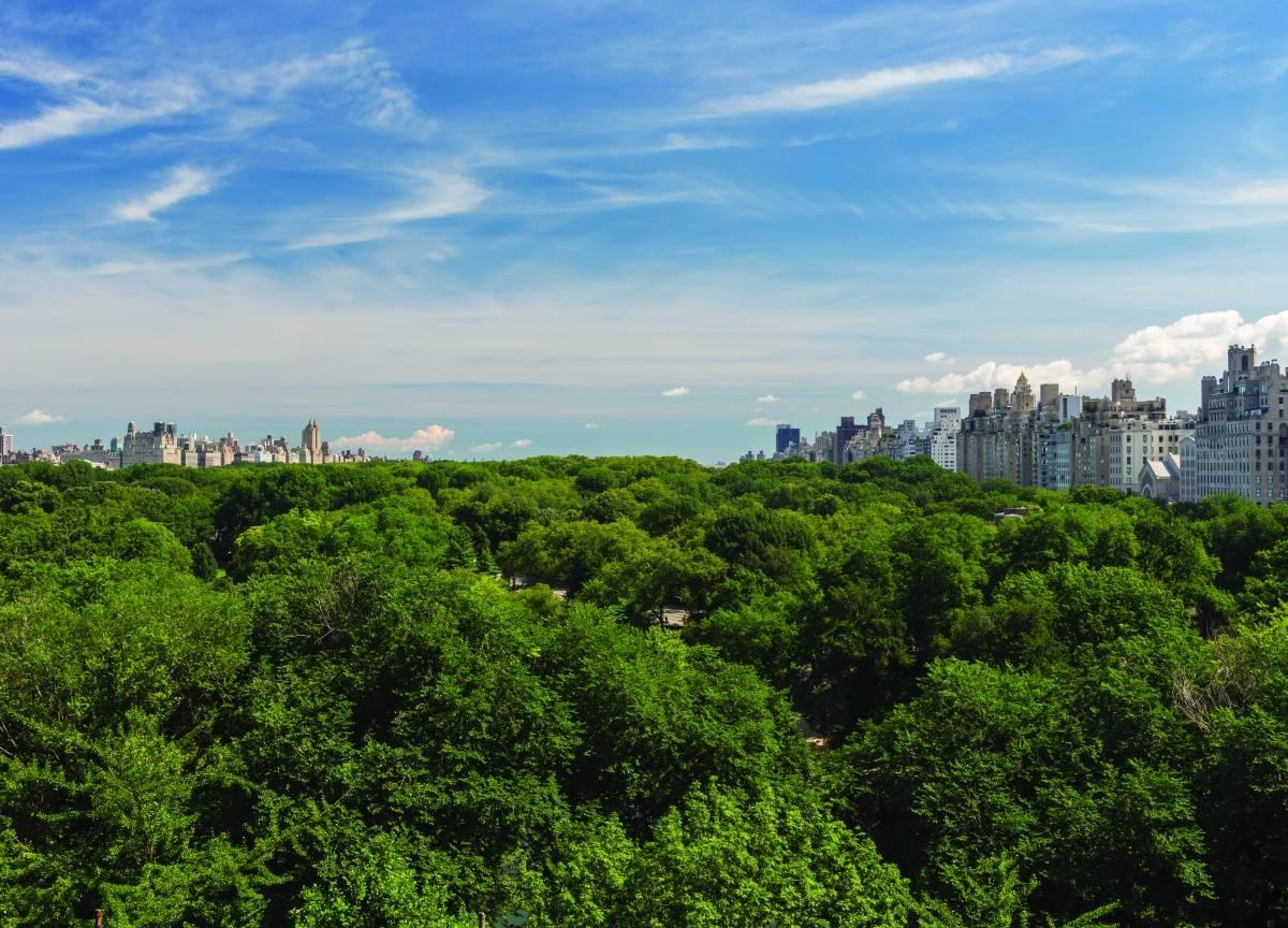 22 Central Park South