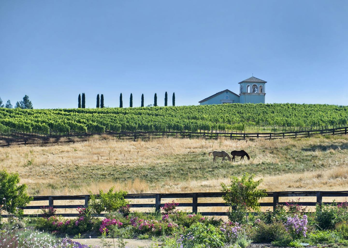 CA Ranch, Church & Vineyard