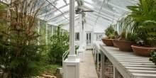 Max-Azrias-greenhouse-78a821