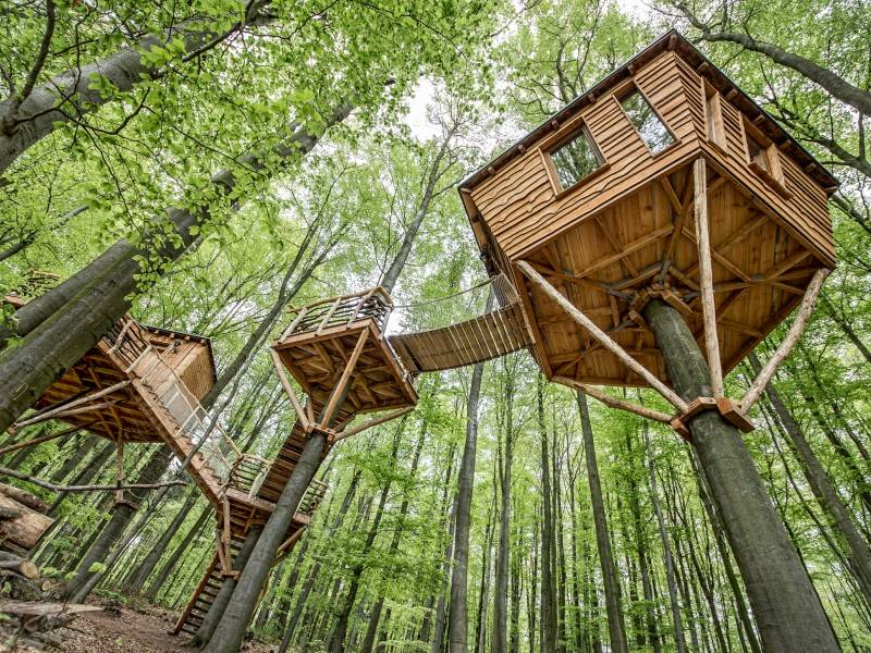 guests can stay in 39 treehouse 39 cabins at this hotel resort in germany. Black Bedroom Furniture Sets. Home Design Ideas