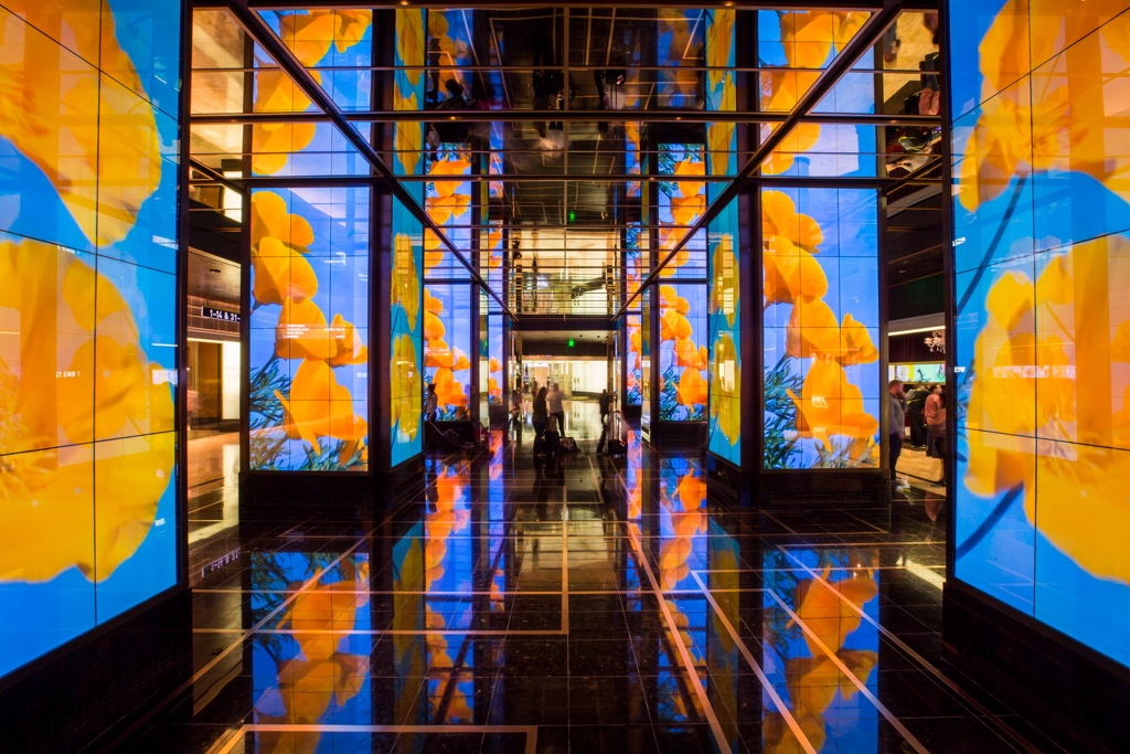 Moving Poppies, Lobby at The Cosmopolitan, Las Vegas