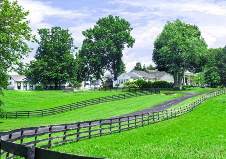 johnny-depps-41-acre-horse-farm-in-kentucky-gets-ready-to-hit-the-auction-block-after-failing-to-sell-for-2-9m41-730x514