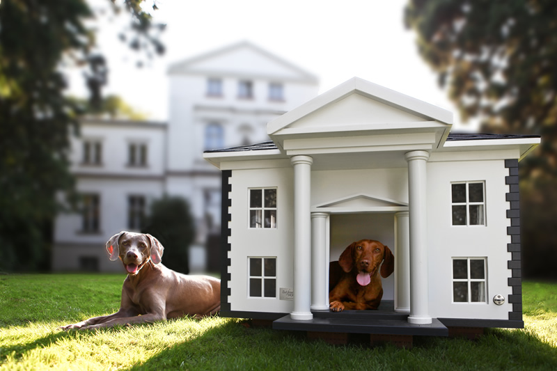 4-luxury-dog-houses-by-Best-friend's-HOME