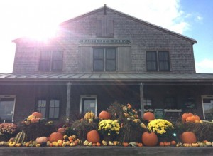 Nantucket Thanksgiving 2