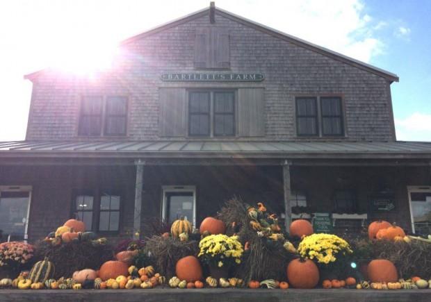 Nantucket Thanksgiving 2