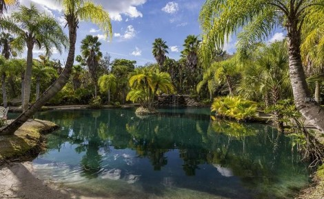 Lagoon on a property in Ruskin Florida off Tampa Bay